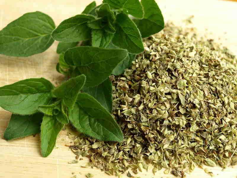 درمان فشار خون بالا با گیاهان دارویی